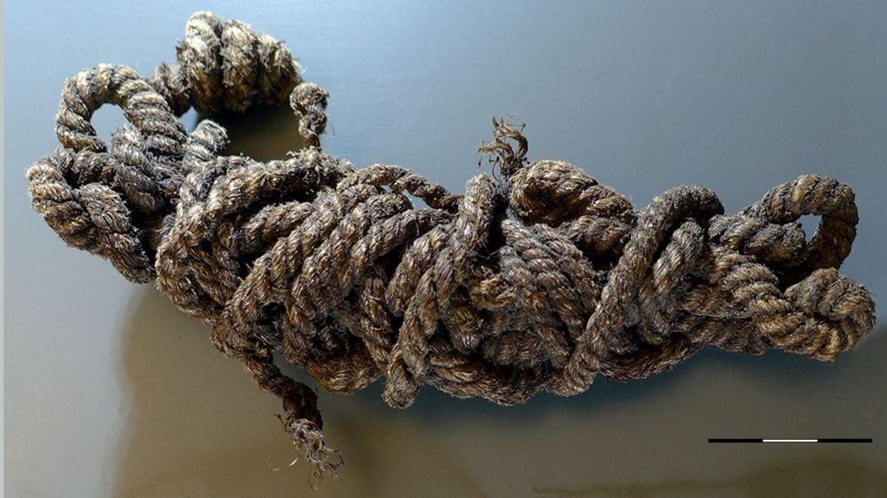 """Foto: Südtiroler Archäologiemuseum / So sieht sie aus, die Bogensehne von """"Ötzi""""."""