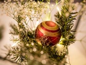 Weihnachtsgrüße des DSB