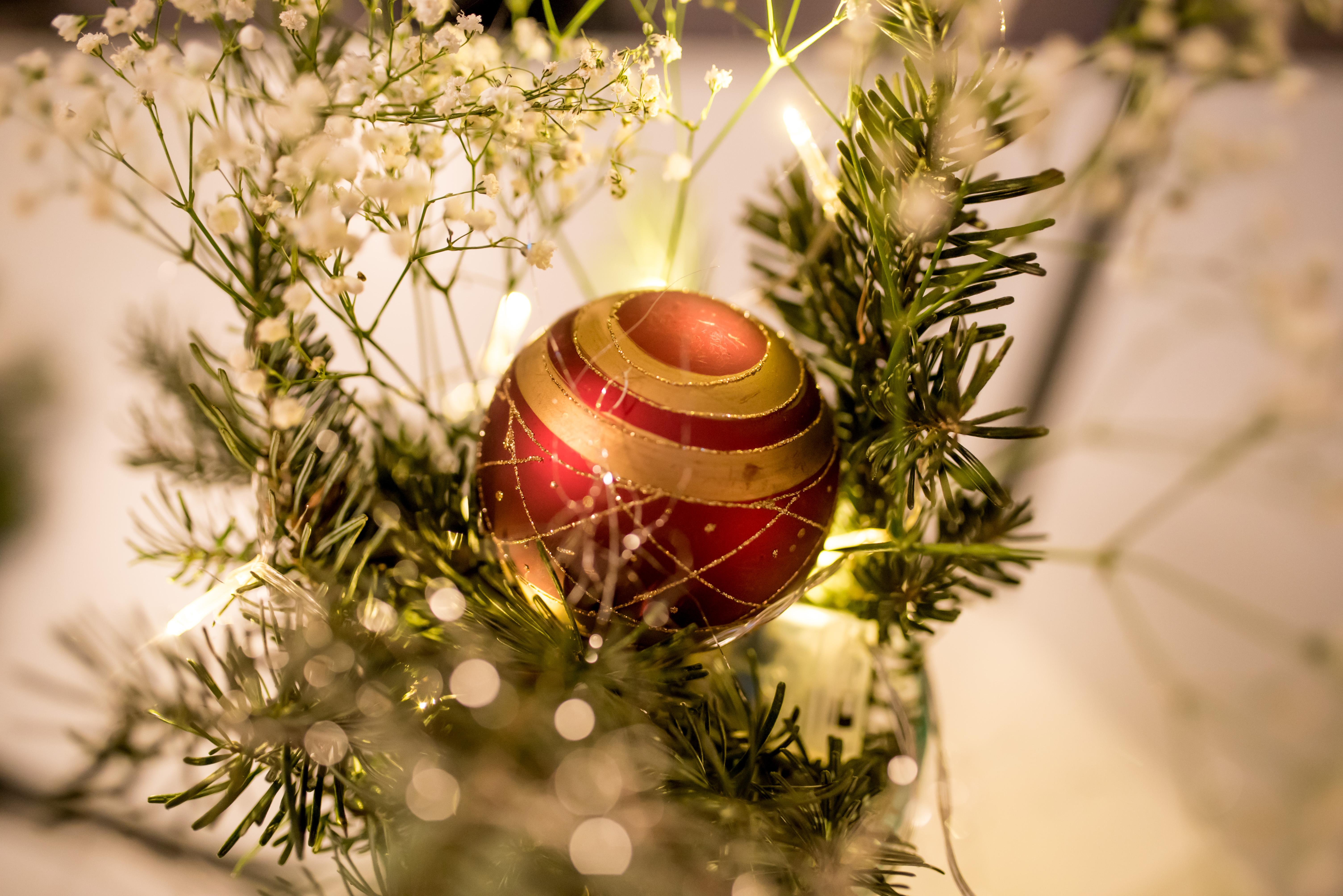 Weihnachtsgrüße An Sohn.Weihnachtsgrüße Des Dsb